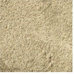 Chaste Tree (Vitex agnus-castus) Berry Powder