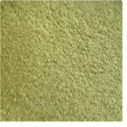 Alfalfa Powder Organic(Medicago sativa)