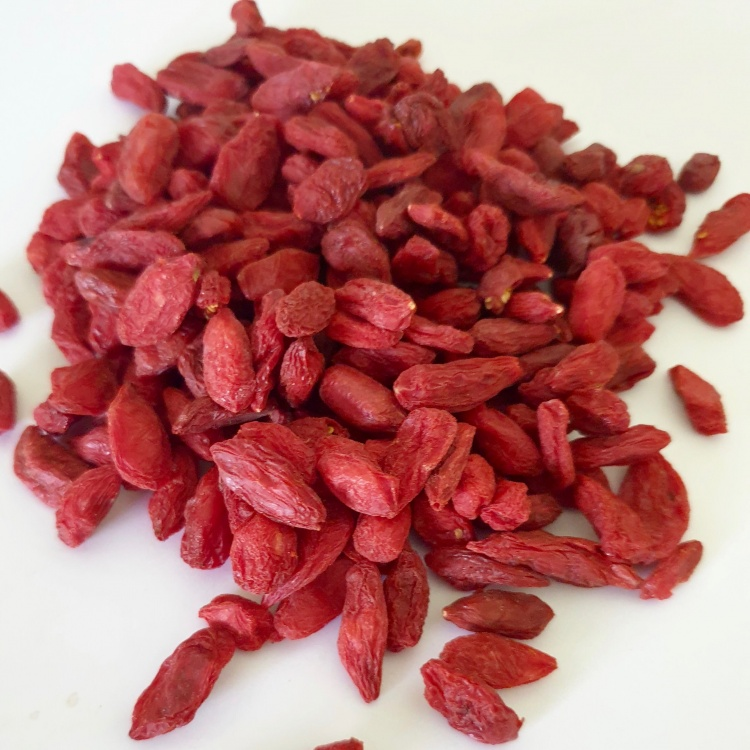 Goji Berries Organic (Lycium barbarum) Fruit